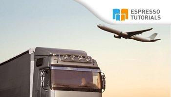 Practical Guide to SAP Transportation Management (TM)