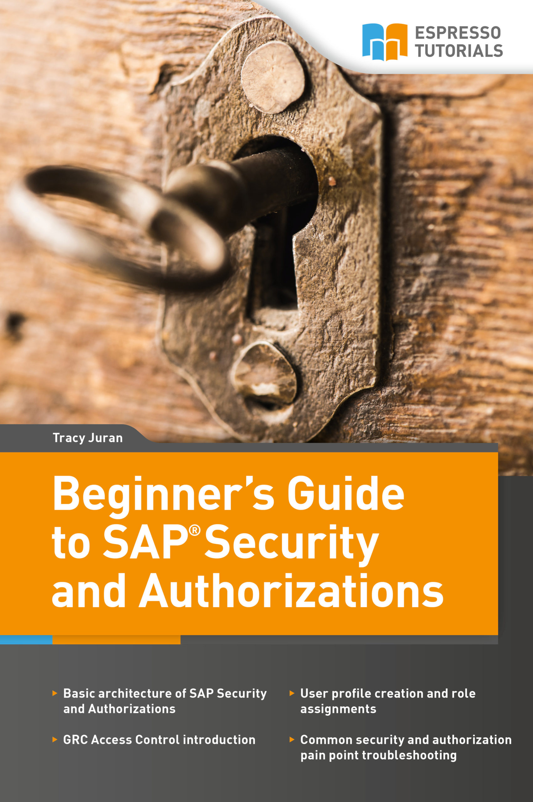 Beginner`s Guide to SAP Security and Authorizations