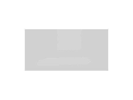 Motorsport Solutions Automotive